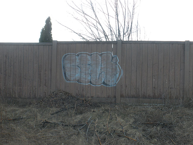 Cels Mississauga graffiti picture
